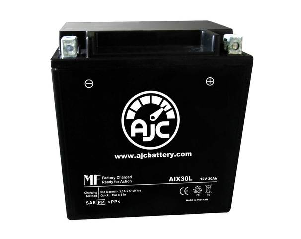 AJC AIX30L Powersports Battery