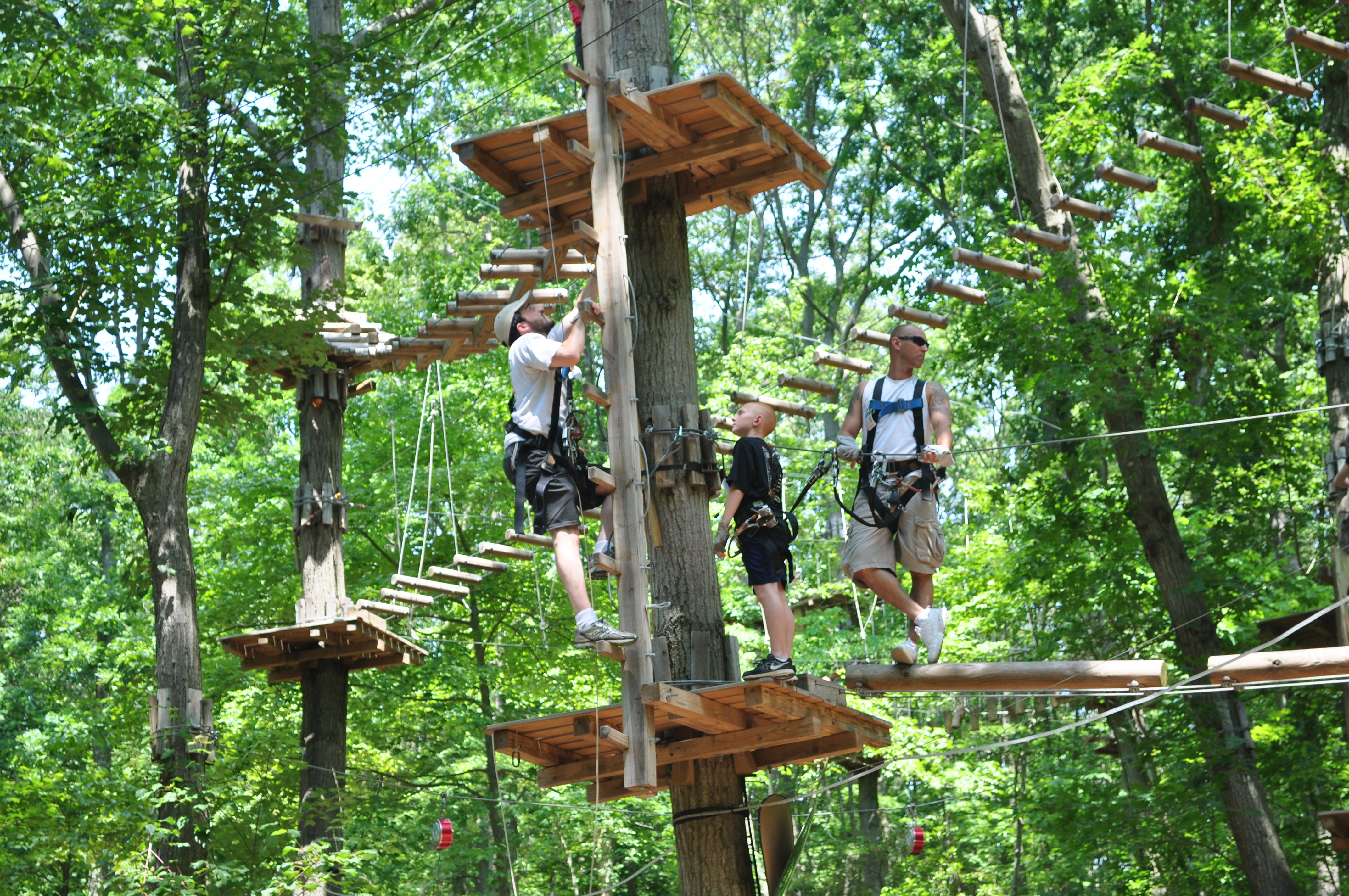 You Climb A Tree We Ll Plant A Tree Says The Adventure Park At Nashville For Arbor Day Weekend April 26 28 2019