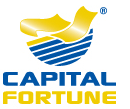 Award-winning Capital Fortune Re-Launch Their UK Mortgage Broker Website