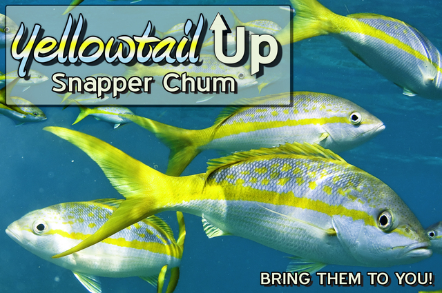 Yellowtail Up Snapper Chum