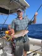 flag yellowtail snapper