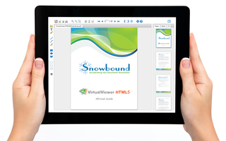Snowbound Improves Fault Tolerance, Expands Viewer Accessibility with Speech Synthesis