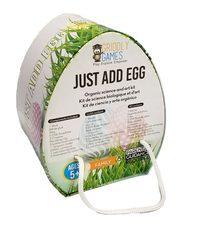 Griddly Games' Egg-cellent STEAM Kit Hops Into Easter Baskets