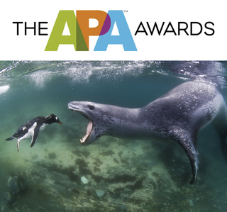 American Photographic Artists Announces THE APA AWARDS 2012 Winners