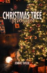 Parker, CO Author Publishes Christmas Novel