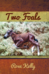 Dover Foxcroft, ME Author Publishes Non-Fiction Book
