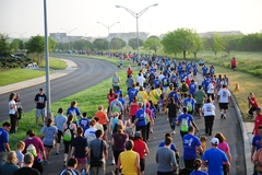 Views of the crowds as they start 5K9 Walk Run San Antonio in 2012.